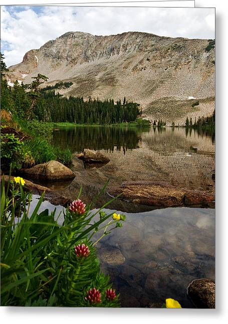 Greeting Card featuring the photograph Mitchell Lake Reflections by Ronda Kimbrow