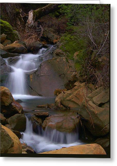Mix Canyon Creek Greeting Card by Bill Gallagher