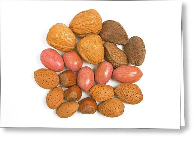 Mixed Nuts Greeting Card by Ann Pickford