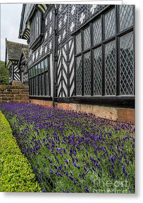 Moat Of Lavender Greeting Card by Adrian Evans