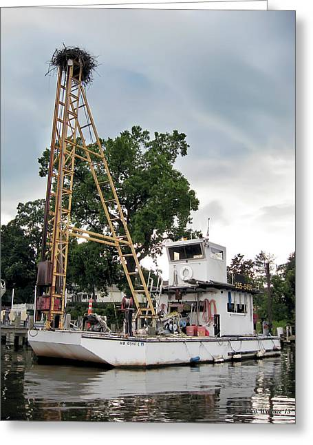 Greeting Card featuring the photograph Mobile Osprey Nest by Brian Wallace