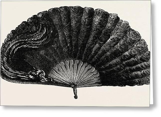 Modern Ostrich Feather Fan Greeting Card by English School