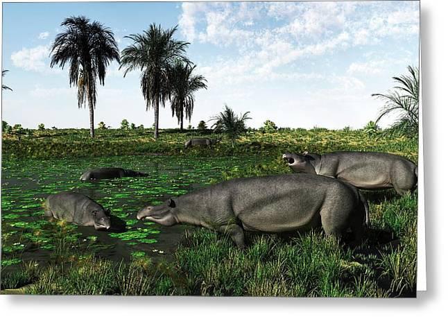 Moeritherium Mammals Greeting Card