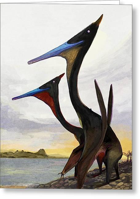 Moganopterus Pterosaurs Greeting Card