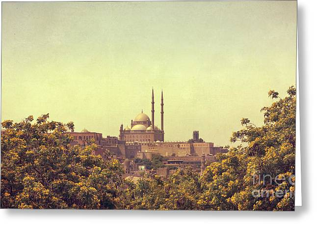 Greeting Card featuring the photograph Mohamed Ali Mosque by Mohamed Elkhamisy