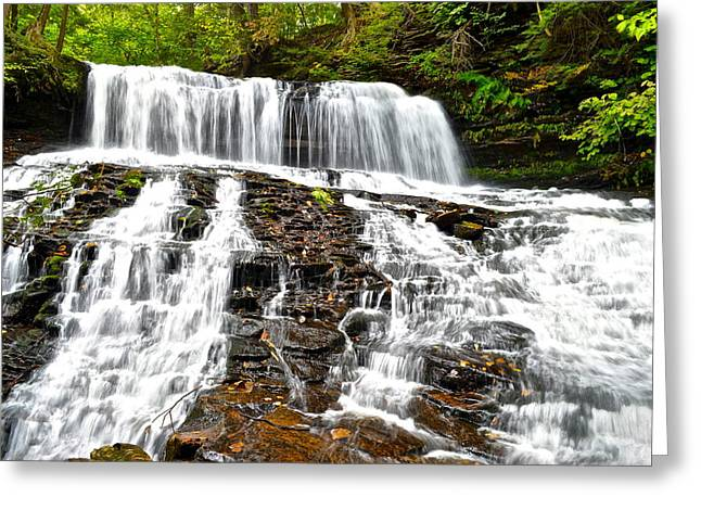 Mohawk Falls Greeting Card by Starving  Artist