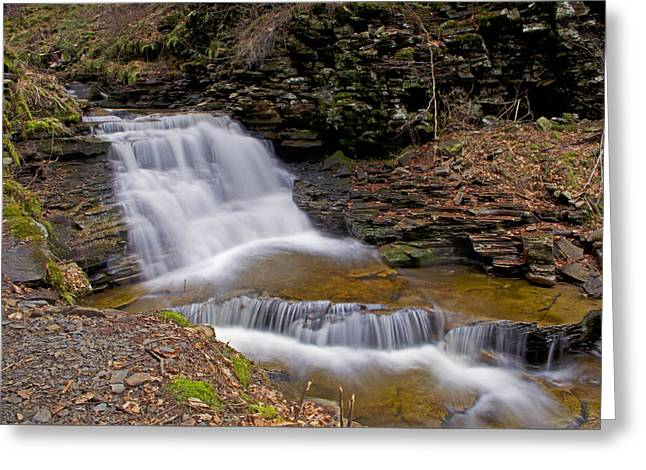 Mohican Falls In Spring Greeting Card by Shelly Gunderson