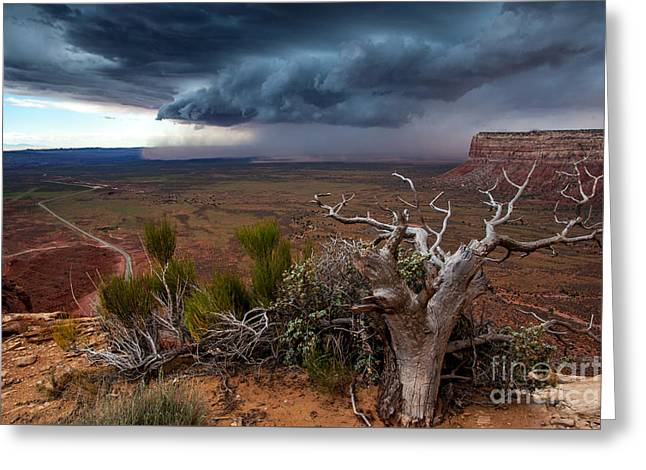 Moki Dugway Thunderstorm - Southern Utah Greeting Card