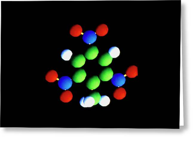 Molecule Of Trinitrotoluene Greeting Card by Dassault Systemes Biovia Ltd/science Photo Library
