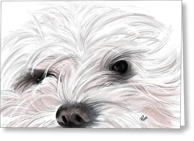 Mollie Greeting Card