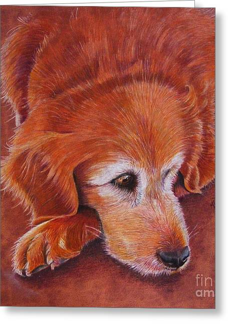Mollie Greeting Card by Marilyn Smith