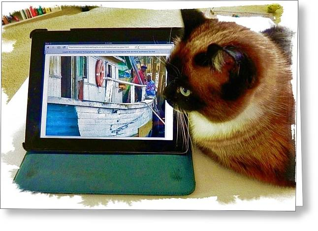 Molly Checks The Shrimp Boat For Dinner Greeting Card by Patricia Greer