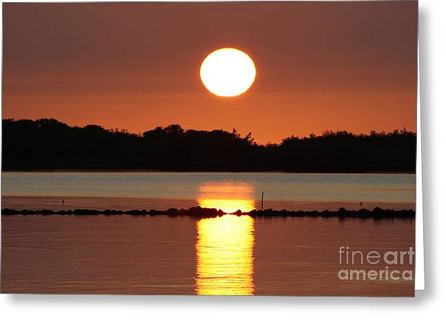 Molokai Fishpond Greeting Card by Fred  Sheridan