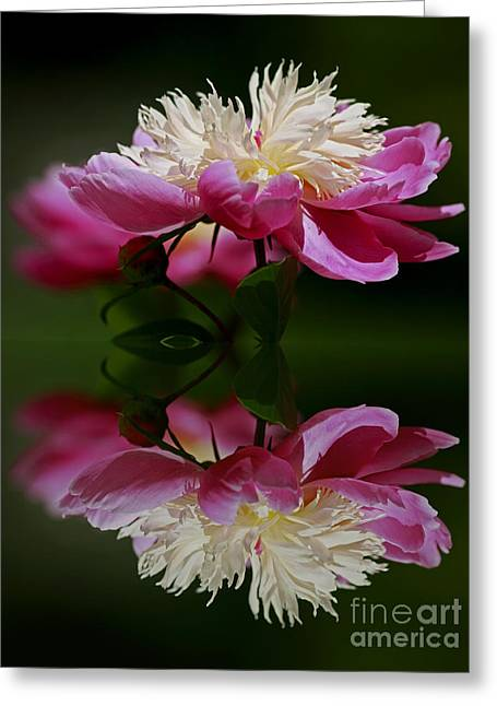 Moments Of Reflection Greeting Card by Inspired Nature Photography Fine Art Photography