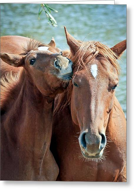 Mommy And Me Greeting Card by Athena Mckinzie