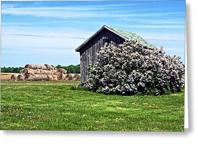 Moms Lilac Barn Greeting Card by Cheryl Cencich