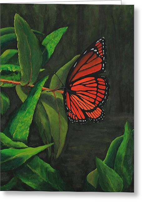 Viceroy Butterfly Oil Painting Greeting Card