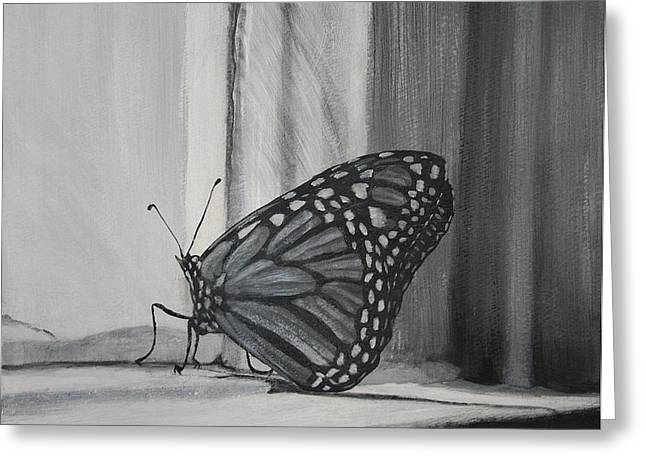 Monarch In The Window Greeting Card
