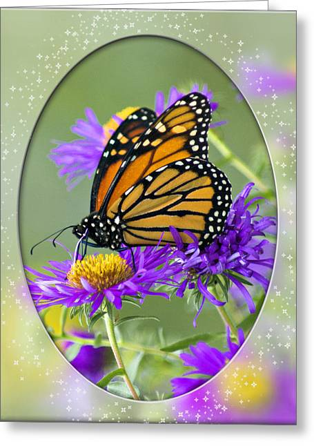 Monarch On Astor Greeting Card by Judy  Johnson