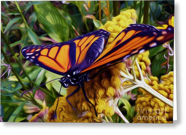 Monarch On Yarrow Greeting Card