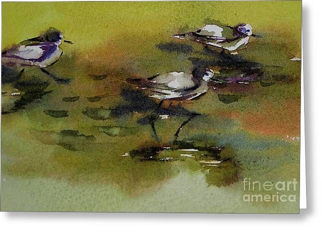 Monday Evening Sandpipers  Greeting Card