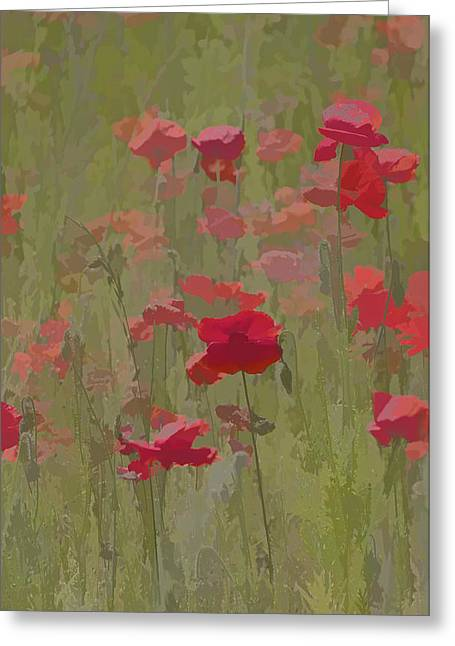 Monet Poppies Greeting Card by David Letts