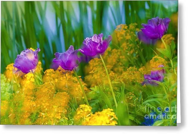 Monet's Garden Greeting Card by Russ Bishop