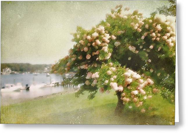 Greeting Card featuring the photograph Monet's Tree by Karen Lynch