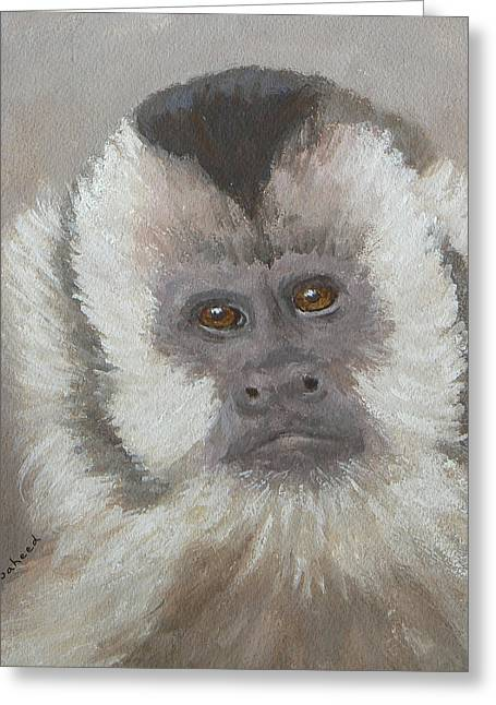 Monkey Gaze Greeting Card by Margaret Saheed