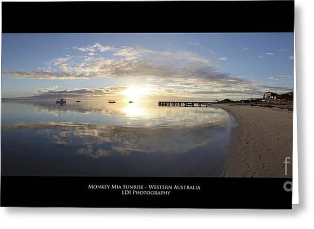 Monkey Mia Western Australia Greeting Card by Diagnostic Photography