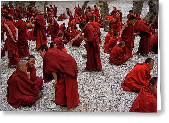 Monks Debating Greeting Card