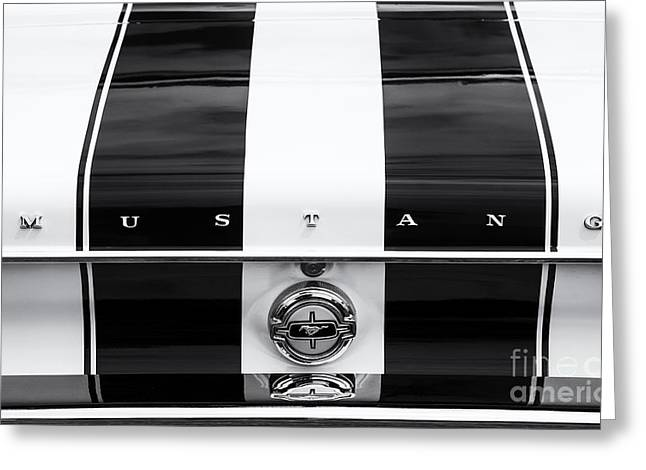 Monochrome Mustang  Greeting Card