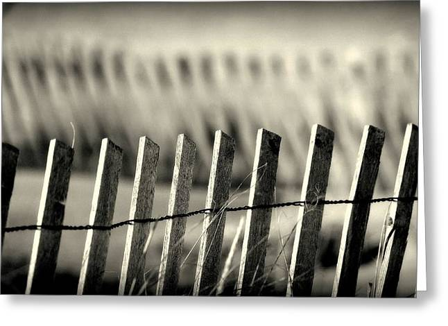 Monochrome Sand Dune Fencing On Lake Michigan Greeting Card by Rosemarie E Seppala