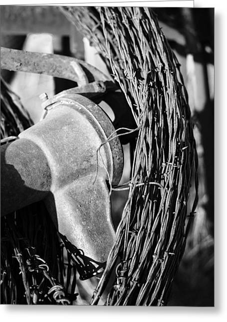 Monochromed Barbed Wire Greeting Card by David Allen Pierson