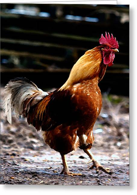 Monsieur Coq Greeting Card