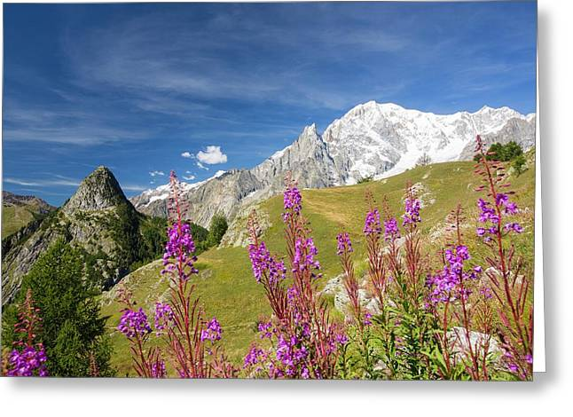 Mont Chetif And The Mont Blanc Range Greeting Card