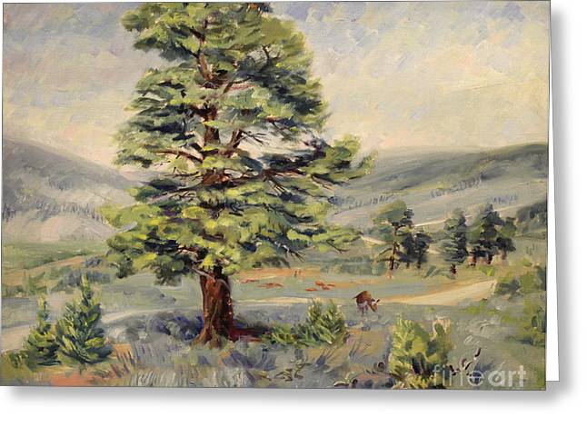 Montana Grazer 1935 Greeting Card