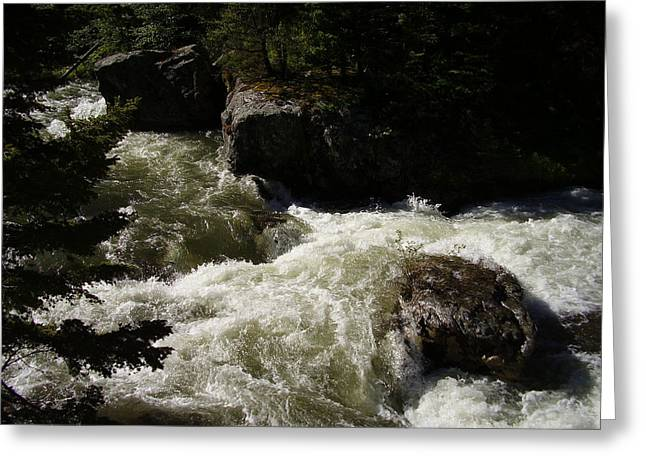 Montana River Rapids Greeting Card by Yvette Pichette