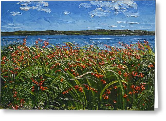 Montbretia Connemara Ireland Greeting Card