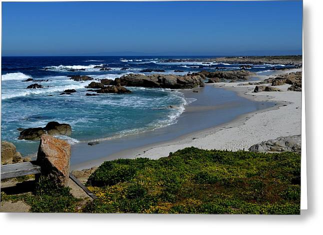 Greeting Card featuring the photograph Monterey-1 by Dean Ferreira