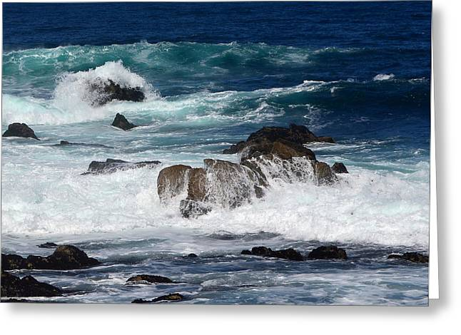 Greeting Card featuring the photograph Monterey-6 by Dean Ferreira