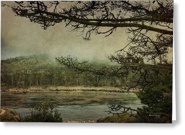 Monterey Bay - The Other Side Greeting Card by Angela A Stanton