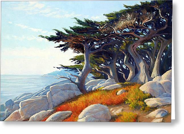 Monterey Cypress Greeting Card by Armand Cabrera