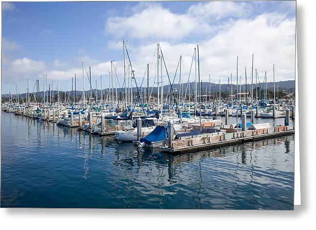 Monterey Harbor Greeting Card by Priya Ghose
