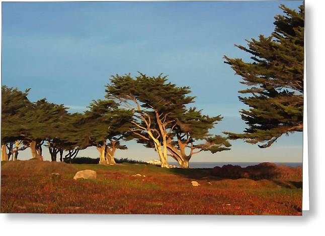 Monterey Cypress Trees Greeting Card by Art Block Collections