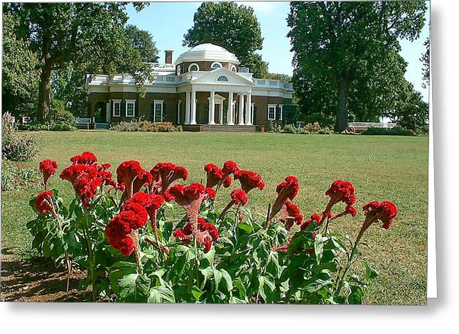 Monticello Cockscomb In Bloom Greeting Card