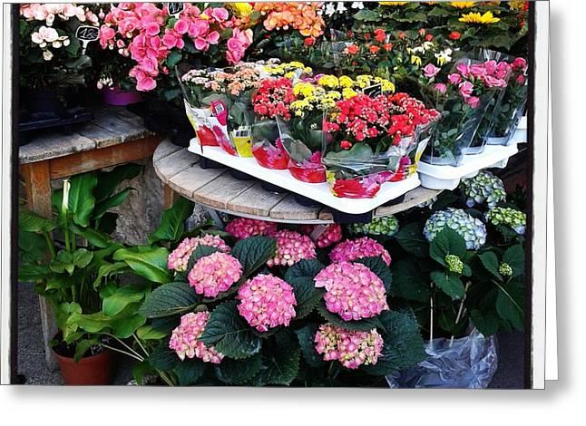 Montpellier Flower Shop Greeting Card by Victoria Herrera