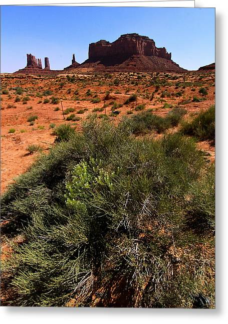 Monument Valley Greeting Card by Angie Wingerd