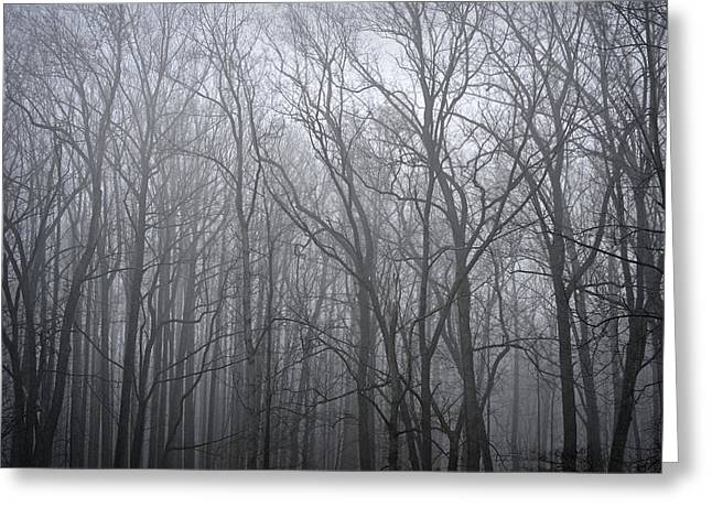 Moody Outlook Greeting Card by Mary Zeman