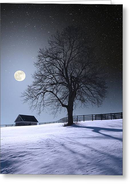 Greeting Card featuring the photograph Moon And Snow by Larry Landolfi